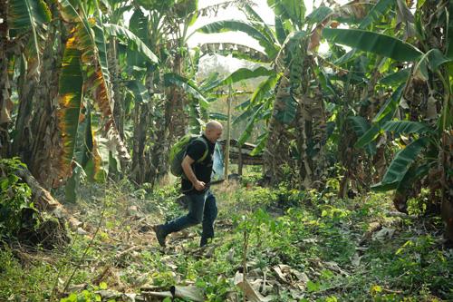 Don Kogen im Dschungel