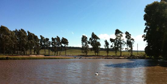 Pampa-y-rio